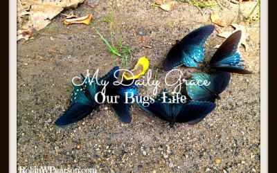 Our Bugs' Life